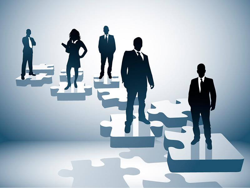 Empresarios / Profesionales